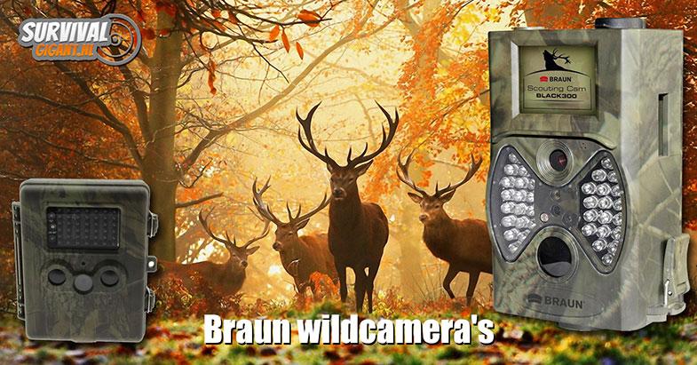 Braun wildcamera's